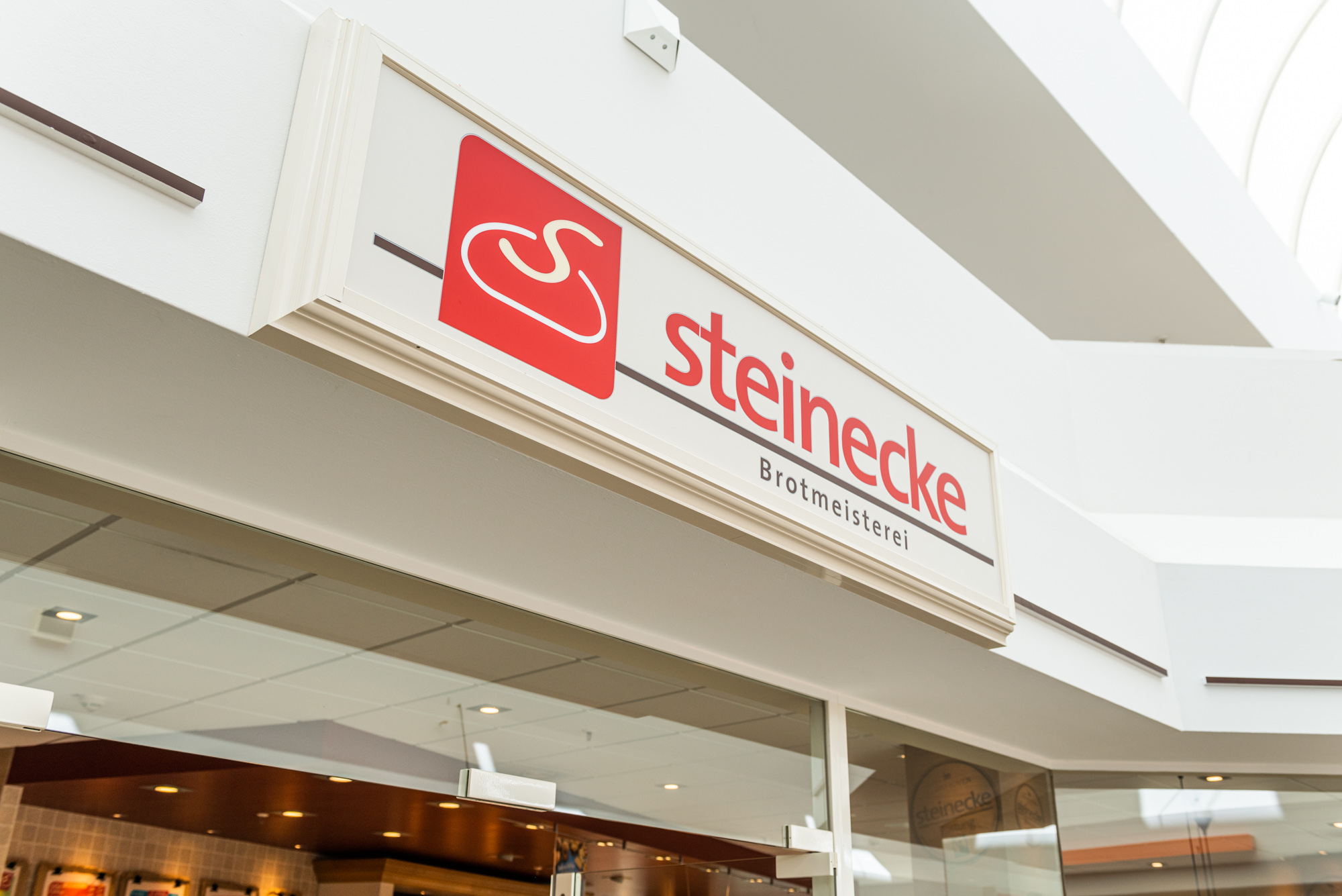 Steinecke 3